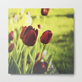 When Spring Was Here Metal Print