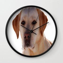 Portrait of A Golden Labrador Dog Wall Clock