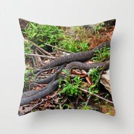 Copperheads Throw Pillow