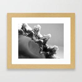 B&W Shell Edge Framed Art Print
