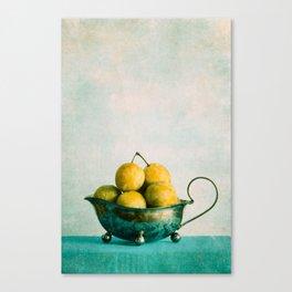 summer kiss Canvas Print
