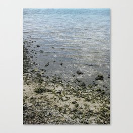 All Things Lovely Canvas Print