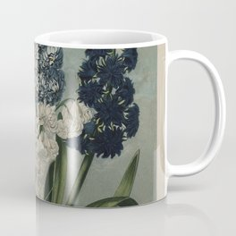 Edwards, S. (1768-1819) - The Temple of Flora 1807 - Hyacinths Coffee Mug