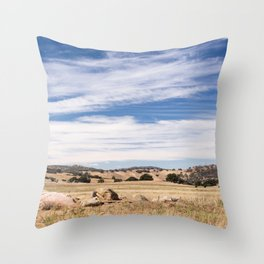 Dry meadows and rolling hills near Julian, CA Throw Pillow
