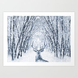 Winter deer Kunstdrucke
