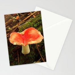 Mushroom M Stationery Cards