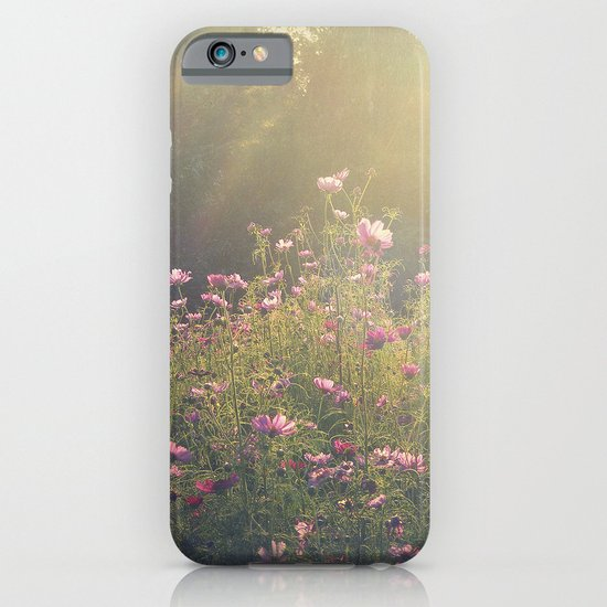 Cosmos in the Late Day Sun iPhone & iPod Case