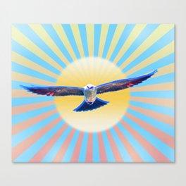 Hawk Starburst Canvas Print