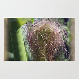 maize -1- Rug