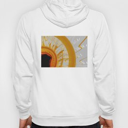 Flying To Close to the Sun Hoody