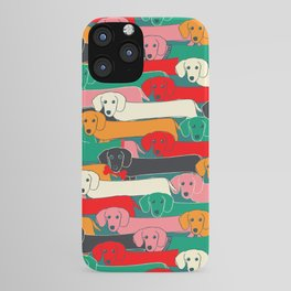 dachshund pattern- happy dogs iPhone Case