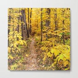 a path of yellow Metal Print