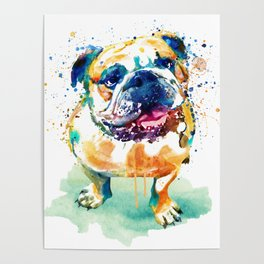 Watercolor Bulldog Poster
