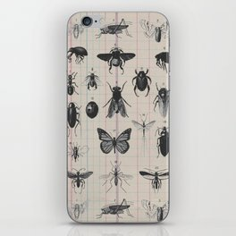 Vintage Insect Study on antique 1800's Ledger paper print iPhone Skin