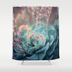 Echeveria #1 Shower Curtain