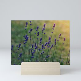 Field of Dreamflowers Mini Art Print