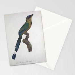 Vintage Bird Print - Motmot Stationery Cards