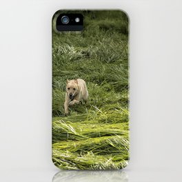 Happiness is Running Through a Field of Grass iPhone Case