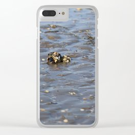 Shells in the sand 2 Clear iPhone Case