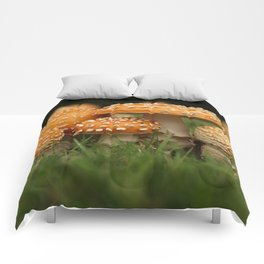 Amanita Colony... Comforters