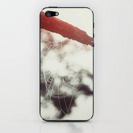 Spider Web iPhone Skin