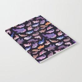 Shark day Notebook