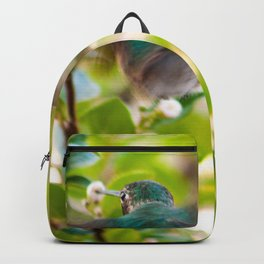 Hummingbird Summer Blur photography by CheyAnne Sexton Backpack