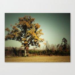 Autumn 2010 Canvas Print