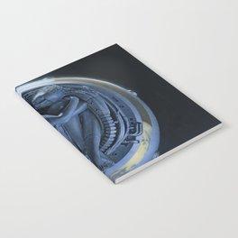 Orbiter II Notebook