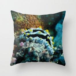 Common nudibranch portrait Throw Pillow