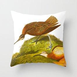 Eskimo Curlew Bird Throw Pillow