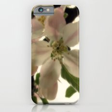 Spring Romance Slim Case iPhone 6s