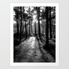 Path of Light BW Art Print