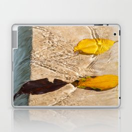 Flow with the river Laptop & iPad Skin