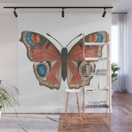 Peacock Butterfly Illustration Wall Mural