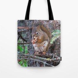 Squirrel Friend Tote Bag