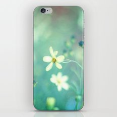 Lovestruck iPhone & iPod Skin