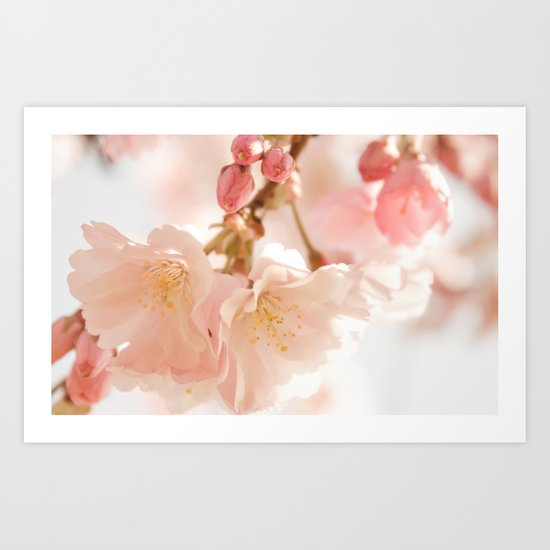 Cherry Bokeh Art Print