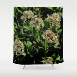 Stopping to Smell the Flowers at the Top of the Mountain Shower Curtain