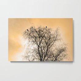 Sepia Roosting birds Metal Print