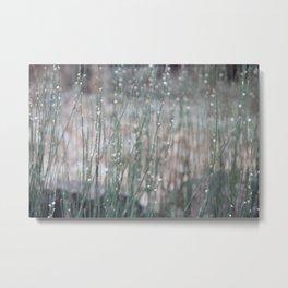 like rain Metal Print