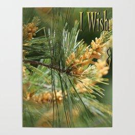 I Wish You Peace & Joy Poster