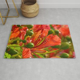 Red flame tree 290 Rug