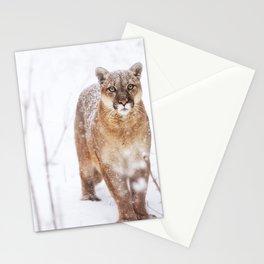 Mountain lion portrait. Beautiful animal photo Stationery Cards