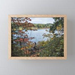 Splashes of Color Around Clear Lake Framed Mini Art Print
