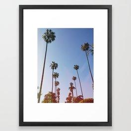Beverly Hills Palms Framed Art Print