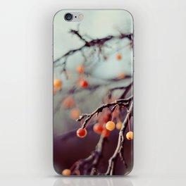 Marzipan iPhone Skin