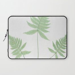Botanical Beech Fern Laptop Sleeve