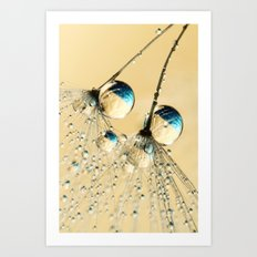 Duo Shower Dandy Drops Art Print