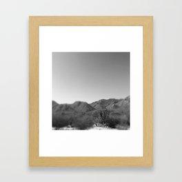 BLACK AND WHITE CACTUS Framed Art Print